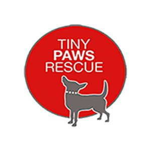 Adopt a Dog - Tiny Paws & Chi Rescue - Spring, Tomball, Houston TX
